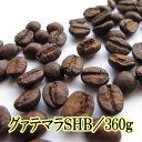 コーヒー豆 送料無料 お試し 珈琲 ポッキリ 360g 酸味
