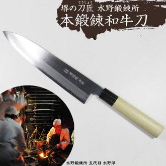 此培訓牛肉刀 240 mm #2400566 美津濃培訓研究所,日本廚房刀具刀大馬士革層壓板