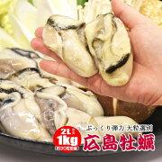広島県産【牡蠣むき身】大粒1キロ/冷凍カキ/特大2Lサイズ/お鍋にピッタリ