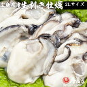 2Lサイズ 生むき牡蠣 メガ盛り2kg 解凍後1600g 広島県産牡蠣 カキ かき 冷凍 むき身【冷凍便同梱可】