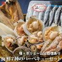海鮮バーベキューセット 海鮮 花見 バーべキュー BBQ 【...