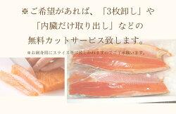 【二本以上購入で送料無料】【グルメ派なあの人へのギフトとしても】愛知県の希少価値の高いブランド魚!絹姫(きぬひめ)サーモン1.5kg前後!安心安全の生食用・刺身OK!【冷凍・冷蔵便同梱可】【無料カットサービス】【10P08Feb15】