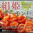 【二本以上購入で送料無料】愛知県の希少価値の高いブランド魚!絹姫(きぬひめ)サーモン1.5kg前後!...