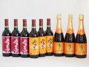 おたるワイン9本セット(キャンベルスパークリング赤ワインやや甘口 赤ワイン生葡萄酒 甘口 赤ワイン生葡萄酒 山ぶどうやや甘口) 720ml×9本