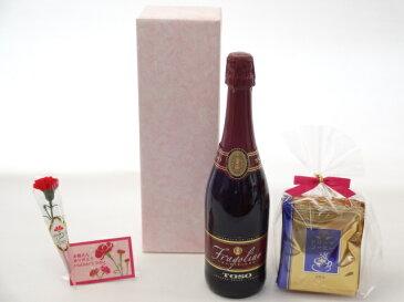 母の日 ギフトセット ワインセット 挽き立て珈琲(ドリップパック5パック)(いちごのスパークリングワイン トーゾ・フラゴリーノ750ml甘口(イタリア・泡・赤))母の日カード お母さんありがとうカーネイション