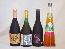 贅沢梅酒4本セット(古酒仕込み梅酒 紅南高梅酒20度(和歌山) 手作り梅酒(宮崎県) 梅香 百年梅酒(茨城)) 720ml×4本