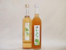 梅酒特集2本セット(奥の松純米酒ベースうめとろ(福島) 百助梅酒(大分)) 500ml×2本