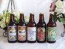 セレクション地ビール5本セット 金しゃちビール飲み比べ5本セ...