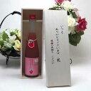 贈り物セット 篠崎 福岡産ブランドあまおう100%使用 あまおう梅酒はじめました。(福岡県) 500ml いつもありがとう木箱セット