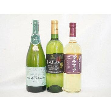 ワインセット 国産白ぶどうワイン3本セット 甲州遅摘み(甲州種)×1本 デラウェア(デラウェア種)×1本 マディデラウェアスパー