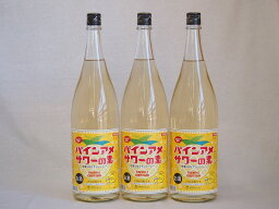 パインアメサワーの素 甘酸っぱくジューシーパイナップル果汁 25度 中野BC(和歌山県)1800ml×6