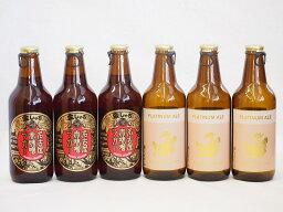 赤味噌クラフトビール飲み比べ6本セット(プラチナエール 名古屋赤味噌ラガー) 330ml×6本