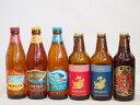 クラフトビール6本セット(アルト ピルスナー 名古屋赤味噌ラガー ビッグウェーブ・ゴールデンエール ファイヤーロック ロングボード) 330ml×3本 355ml×3本