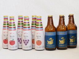 クラフトビールとリキュール9本セット(ヒュヴァ リンゴサワーalc.5% ヒュヴァ 巨峰サワーalc.5% ヒュヴァ 清見サワーalc.5% ピルスナー) 200ml×6本 330ml×3本