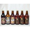 クラフトビールパーティ6本セット インペリアル・スタウト330ml IPA感謝ビール330ml 金しゃちピルスナー330ml 金