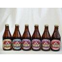 クラフトビールパーティ6本セット ミツボシウィンナスタイルラガー330ml ミツボシピルスナー330ml ミツボシペールエール3