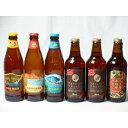 クラフトビールパーティ6本セット 名古屋赤味噌ラガー330ml IPA感謝ビール330ml×2本 ハワイコナビールファイアーロッ
