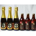 クラフトビールパーティ6本セット IPA感謝ビール330ml×3本 薩摩スパークリングゆずどん375ml×3本