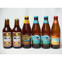 クラフトビールパーティ6本セット 金しゃちアルト330ml×2本 ハワイコナビールファイアーロック・ペールエール355ml ビッ