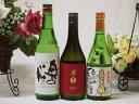 【第2弾】 東北限定地酒特別純米酒日本酒3本セット(岩手県南...