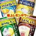 【送料無料】宝酒造 寶 極上レモンサワー詰め合わせセット【350ml缶×24本(4種類×各6本)・1ケース】