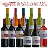 コノスル ヴァラエタル チリ 750ml 12本 ワインセット 【送料無料】【選べる】 [N]
