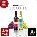 エキゾチックワインチリ750ml6本セット【送料無料】【選べる】