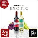 エキゾチックワインチリ750ml12本セット【送料無料】【選べる】