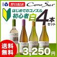 【あす楽】【送料無料】 コノスル ビシクレタ(ヴァラエタル) 初心者 白ワイン 4本セット