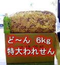 三河名物 割れせんべい 6kg