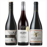 【エノテカ厳選】ピノ・ノワール飲み比べ3本セット [ 赤ワイン ミディアムボディ チリ 750mlx3本 ] 北海道、沖縄は追加送料かかります。