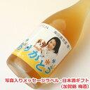 オリジナル名入れラベル 日本酒ギフト(メッセージ・写真入)(...