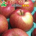 サンふじ 3kg 葉とらずりんご サンふじ 青森 贈答 葉取...