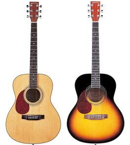 左利き用アコースティックギターF-280LH16点入門セット