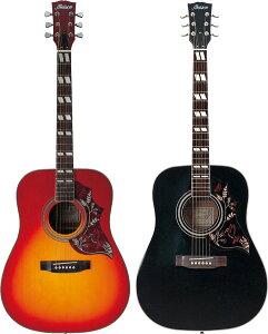 【送料・代引手数料無料!】アコースティックギター H-22 16点入門セット【レビューを書いてDV...
