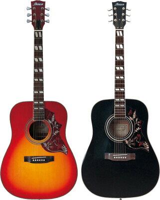 【送料無料】アコースティックギター H-22 16点入門セット【アコギ初心者】【smtb-TK】