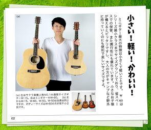 ミニアコースティックギターSepiaCrueW-50(本体のみ)
