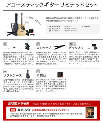 【ご予約商品:5月下旬入荷予定】アコースティックギター HONEY BEE W-15/F-15 アコギ リミテッドセット【今だけ教則DVD付き!】【初心者 入門セット】【大型】・・・ 画像2