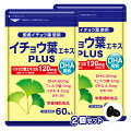 イチョウ葉エキス(DHA配合)PLUS60粒×2個セット【株式会社タケイ】