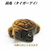銭亀(タイガーアイ)