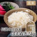 伝説の庄内米 はえぬき/玄米 5kg 【山形県産 特別栽培米