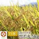 伝説の庄内米 雪若丸 5kg 【山形県産 特別栽培米 令和元年度産】