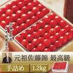 元祖最高級1.2kg