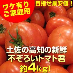 トマト送料無料ワケ有り約4kg高知愛媛産ふぞろいトマトとまと沖縄県と北海道と離島は配送不可!
