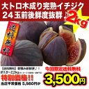 高級果実♪土佐の甘トロイチジク2kg!♪朝採り一番便にて直送致します♪完熟イチジク♪送料無料...