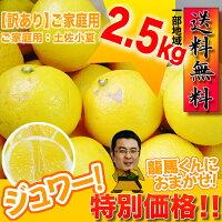 【送料無料】ご家庭用初夏の香り!土佐小夏♪甘酸っぱい果汁が!お口いっぱいに広がります!ワケ有りサイズお任せ♪日向夏・ニューサマーオレンジ!愛媛県では「ニューサマーオレンジ」!宮崎県では「日向夏」約2.5kg