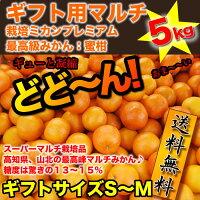 送料無料:ギフト用マルチ栽培ミカン5kg完熟で味の濃〜いプレミアム最高級みかん