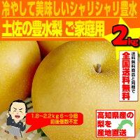 送料無料!土佐の豊水梨2kg!ご家庭用ほとぼしる果汁!!冷やして美味しい!シャリシャリ豊水!