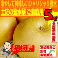 ♪祝開店記念サービス!送料無料!甘くて美味しい土佐の梨