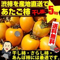 【送料無料】干し柿用あたご柿5kg枝付渋柿用約5kg